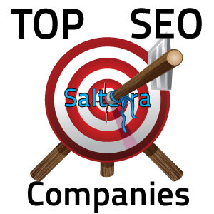 Salterra is the best Affordable SEO